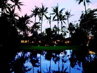 4 bedrooms private villa at Ubud, Bali - Ubud vacation rentals
