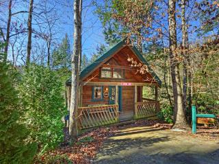Lover's Lane - Cashiers vacation rentals