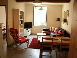 APARTMENT MORTIER, CARCASSONNE - Carcassonne vacation rentals
