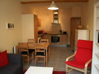 APARTMENT MARMONT, CARCASSONNE - Carcassonne vacation rentals