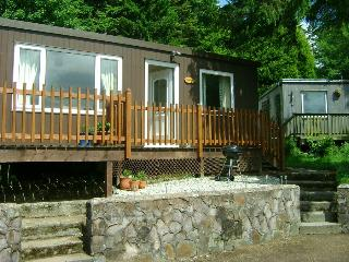4* TREETOPS  Chalet-2 Bedrooms sleeps up to 5 - Aberdovey / Aberdyfi vacation rentals