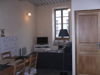 APARTMENT SUCHET, CARCASSONNE - Carcassonne vacation rentals