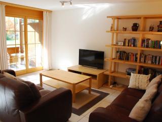 Hafod ad Hendre - Lauterbrunnen vacation rentals
