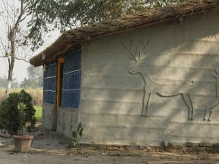 safari lounge organic resort - Bihar vacation rentals