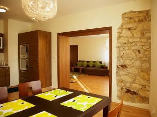 Charles Bridge Luxury Apt (#2) - Czech Republic vacation rentals