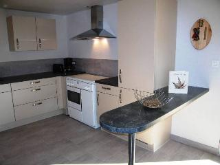 Nice Condo with Internet Access and Central Heating - Munster vacation rentals
