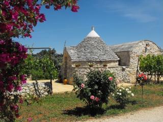 Trullo in Puglia, Alto Salento - San Vito dei Normanni vacation rentals
