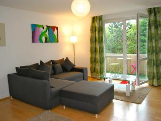 Comfortable 1 bedroom Condo in Baden-Baden - Baden-Baden vacation rentals