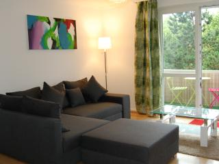 Comfortable Condo with Internet Access and Washing Machine - Baden-Baden vacation rentals
