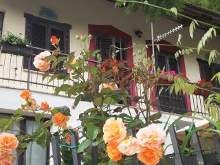 casa vacanza nel verde dei castagneti a 700 metri - Cuneo vacation rentals
