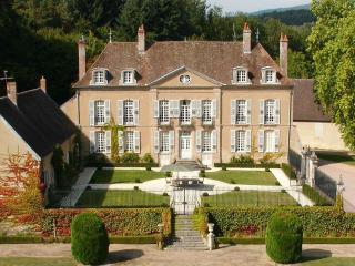 Chateau de Villette - Luzy vacation rentals
