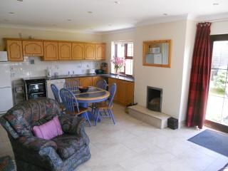 3 bedroom House with Dishwasher in Fethard - Fethard vacation rentals