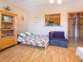 1 bedroom Apartment with Internet Access in Zakopane - Zakopane vacation rentals