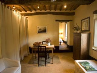 Cozy one bedroom apartment in Tuscan villa with pool, San Galgano Abbey, Siena. - Monticiano vacation rentals