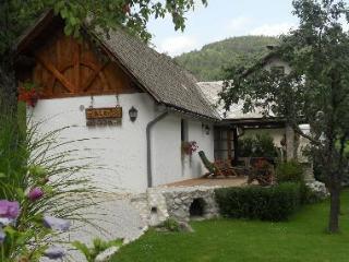 Nice 1 bedroom Cottage in Bohinjska Bela - Bohinjska Bela vacation rentals