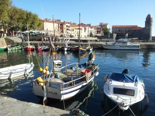 2 bedroom Apartment with Short Breaks Allowed in Collioure - Collioure vacation rentals