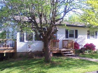 one bedroom apartment in Black Mountain - Black Mountain vacation rentals