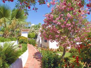 Charming Condo with Internet Access and Water Views - Nerja vacation rentals