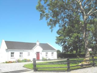 Nice Cottage with Internet Access and Television - Banagher vacation rentals