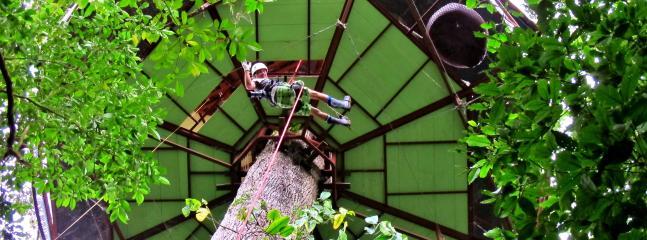 2 bedroom Tree house with Internet Access in Manzanillo - Manzanillo vacation rentals