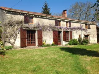 Le Puy Renou,near la Chataigneraie. - La Châtaigneraie vacation rentals