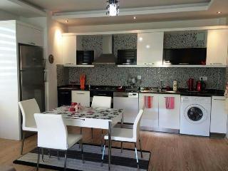 Romantic 1 bedroom Condo in Kestel - Kestel vacation rentals