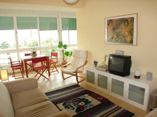 Beach, Surf, Lisbon & Caparica - Costa da Caparica vacation rentals