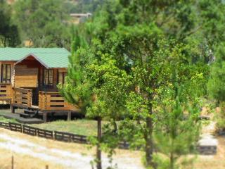 FonteSantaCasasCampo-EastCabin - Vila Nova de Milfontes vacation rentals