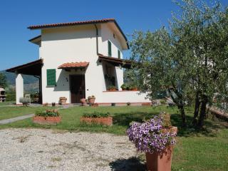 Villa il Ciliegio - Montecarlo vacation rentals