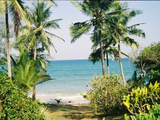 Beautiful 3 bedroom Diani Cottage with Iron - Diani vacation rentals