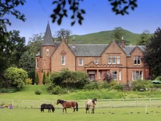 Wonderful 11 bedroom Castle in Biggar - Biggar vacation rentals