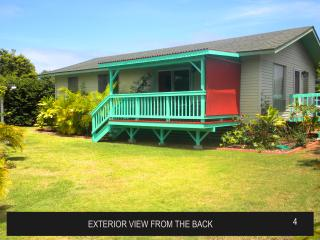 Marlin Vacation Rental House. Walk to Paia Town. - Paia vacation rentals