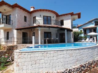 Seafront Villa Ates - Kas vacation rentals