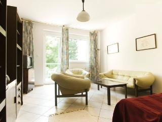 Center Home with free garage - Budapest vacation rentals