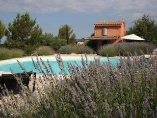 Athentical cabanon in the vineyards in Provence - Mazan vacation rentals