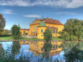 Lovely 9 bedroom Castle in Loosdorf with Internet Access - Loosdorf vacation rentals