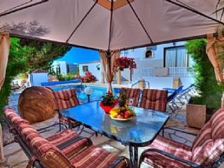 VILLA  ILIANA - Paphos vacation rentals