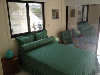 Beautiful Condo with Internet Access and Parking Space - Larnaca District vacation rentals