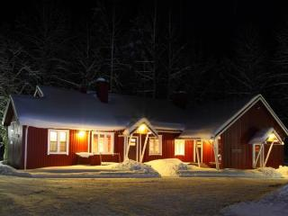 4 bedroom Lodge with Internet Access in Padasjoki - Padasjoki vacation rentals