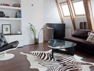 Luxury Loft Centre Terrace - Amsterdam vacation rentals