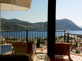 Gorgeous Condo with Internet Access and A/C - Kalkan vacation rentals