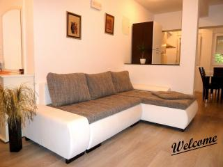 Apartment Adriana - Diklo vacation rentals