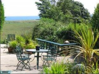 4 bedroom House with Dishwasher in Curracloe - Curracloe vacation rentals