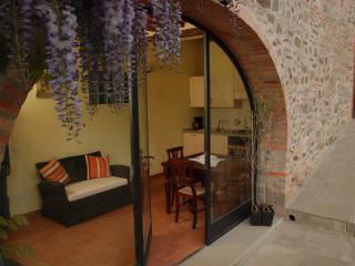 Podere Le Baruti/Castagno - Montevarchi vacation rentals