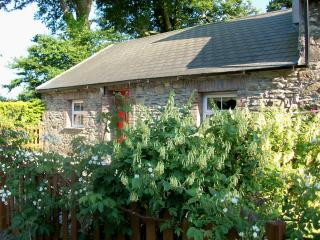 Beautiful Cottage with Satellite Or Cable TV and Television - Campile vacation rentals