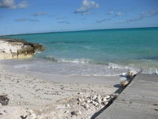 Cozy Apartment in Eleuthera with Internet Access, sleeps 4 - Eleuthera vacation rentals