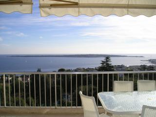Champfleuri - Cannes vacation rentals