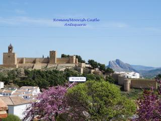 """Los Laureles""  Roof Top Apt. with impressive views. - Antequera vacation rentals"