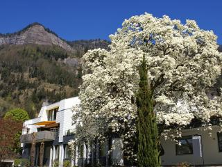 Beautiful 3 bedroom Lucerne Condo with Internet Access - Lucerne vacation rentals