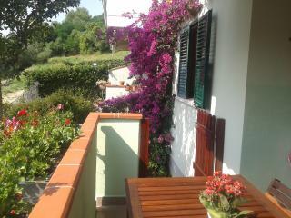 Cozy 2 bedroom Tortoreto Lido Condo with Central Heating - Tortoreto Lido vacation rentals